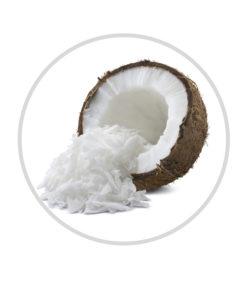 coconut shredded fine