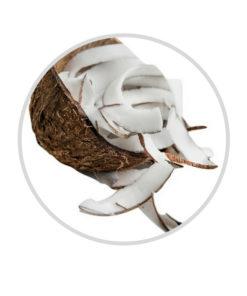 coconut slices