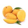 Gayatri Mango Pulp 850g